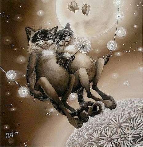 Из любви к котам