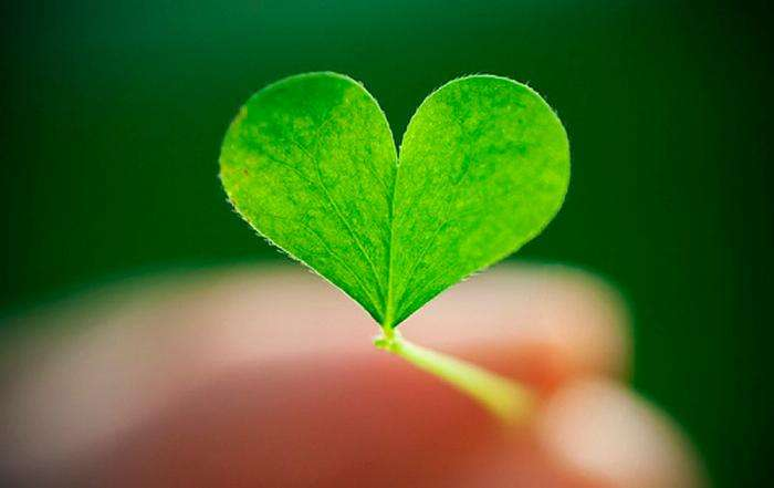 Ко дню Святого Валентина: Сердца, всюду сердца!
