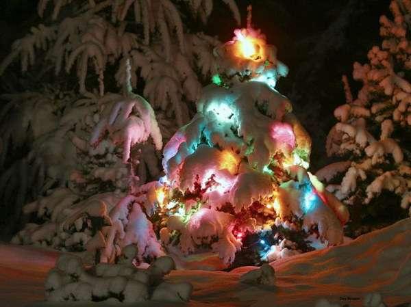 А хотите я расскажу вам рождественскую сказку?