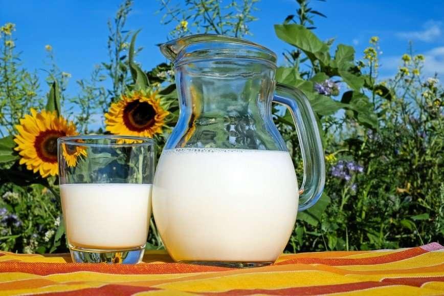 Будьте осторожны: какие проблемы таит в себе молоко